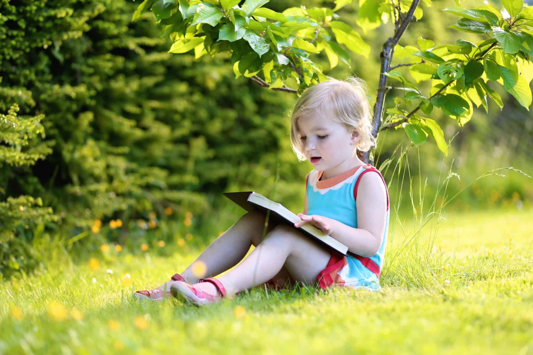Leisurely Summer Reading Childs Play >> Kids Family Programs Bowman S Hill Wildflower Preserve