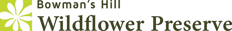 Bowman's Hill Wildflower Preserve