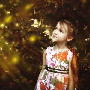 Fascinating Fireflies